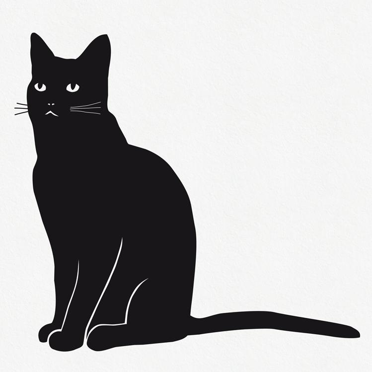 Image of Katze Wandtattoo Fabi