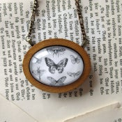 Image of 'Butterfly Collection' Framed Pendant