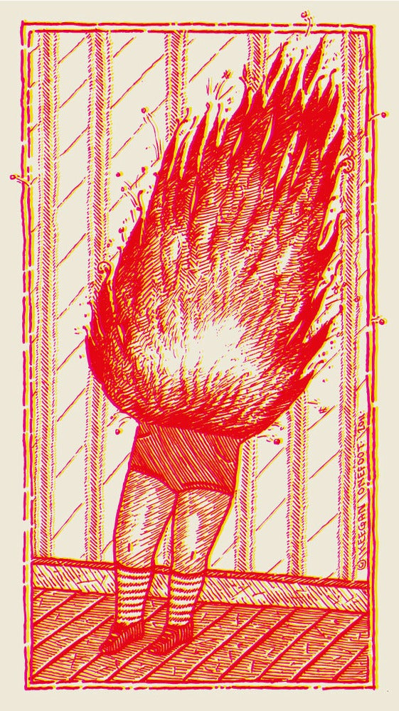 Image of Little Fire