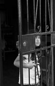 Image of Behind Bars