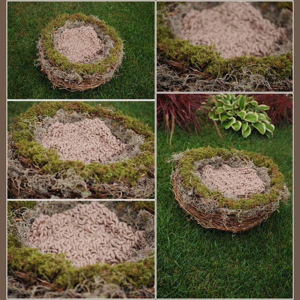 Image of Organic Realistic Birds Nest Photo Prop-EXTRA LARGE