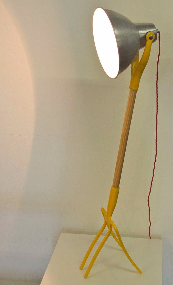 Image of Forking Light