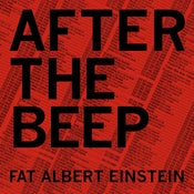 Image of After The Beep (Vinyl)
