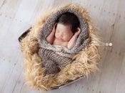 Image of Newborn Peapod