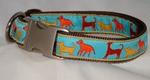Image of Dog Trail Dog Collar in the category  on Uncommon Paws.