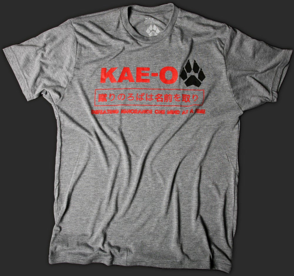 Image of Defeating Ignorance Men's Tri-Blend Tee - Grey