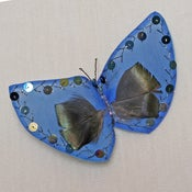 Image of T33   Blue Butterfly