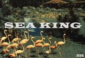 Image of Sea King - Sonic Substance Cassette