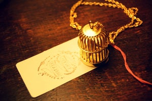 Image of Golden Bird Cage necklace