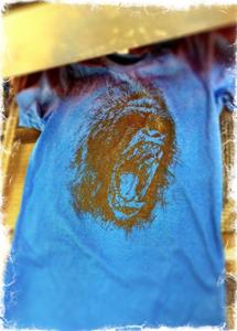 Image of The Cirrus Gorilla