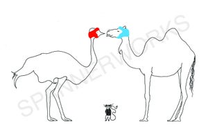 Image of 'Ostrich Vs Camel' A4 Print