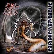 Image of ANAL GRIND Albums CD