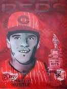 Image of Checkered Past (Pete Rose) - by Rex2