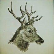 Image of the great prince of the forest