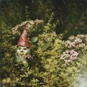 Image of garden gnome