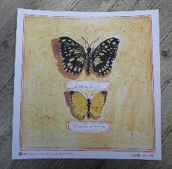 Image of Butterfly Print no.3