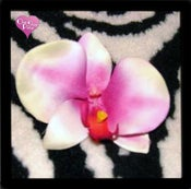 Image of White/Purple Orchid Hair Clip