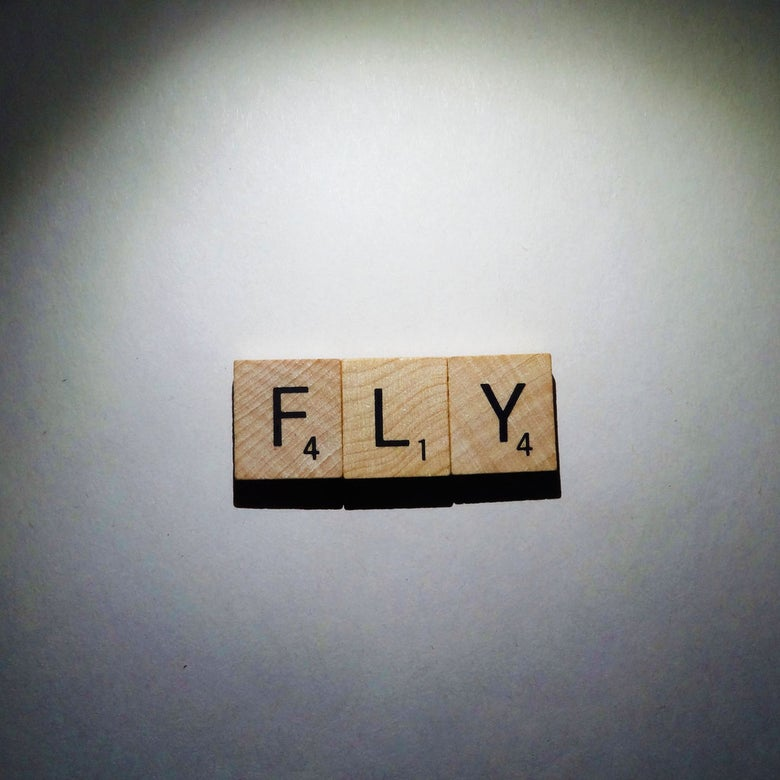 Image of FLY!