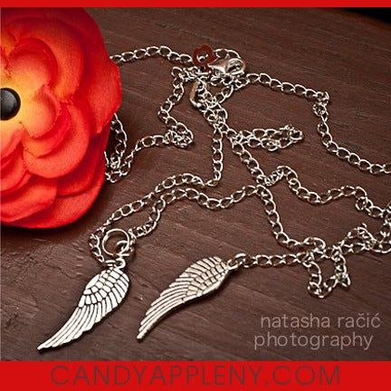 Image of Dream Catcher Wing Necklace