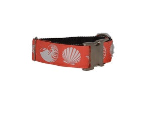 Image of Seashells Collars - Limited Edition in the category  on Uncommon Paws.
