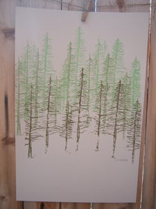Image of Pines