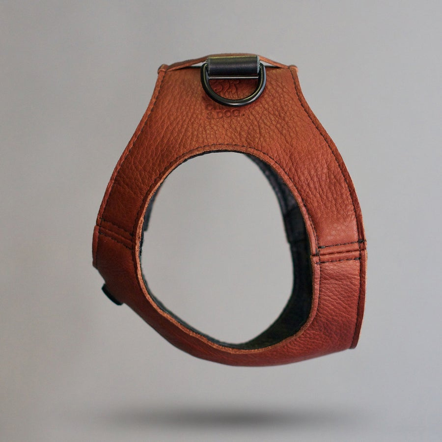 Image of Cognac Harness