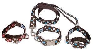 Image of Polka Dots - Collar in the category  on Uncommon Paws.