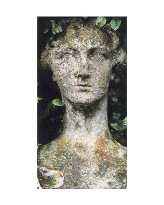 Image of Elegant decay, Statue 1 .... Fine art print