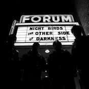 """Image of Nightbirds """"The Other Side Of Darkness"""" LP (Grave Mistake)"""