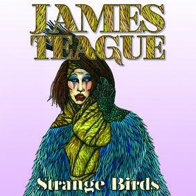 """Image of James Teague - Strange Birds/Hollow 7"""" (FYI010)"""