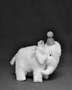 Image of ELI THE MOHAIR ELEPHANT