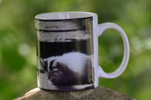 Image of Kismet Barn Kitty Mug