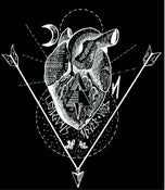 Image of NVRVD/Coilguns- Split EP