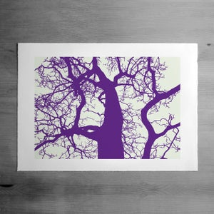 Image of Raven's Seat 2 print