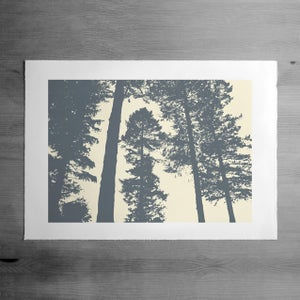 Image of Silverwood 3 print