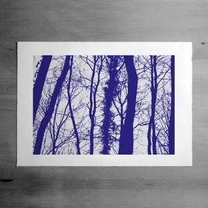 Image of Wyebank print