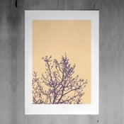 Image of Springtide print