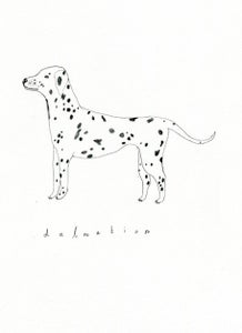 Image of Drawing Of Any Dog