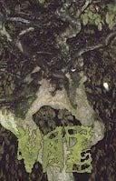 "Image of Vaz ""Chartreuse Bull"" Damage Rituals Cassette"