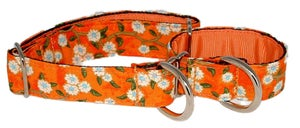 Image of Adeline Cherry Blossom - Martingale Collar in the category  on Uncommon Paws.