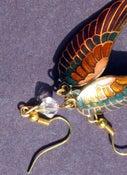 Image of Rainbow Wing Earrings