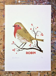 Image of Robin