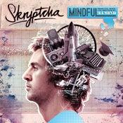 Image of Skryptcha - MINDFUL LP (Personally Signed)