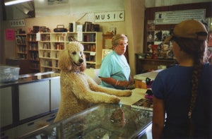 Image of Poodle Thrift