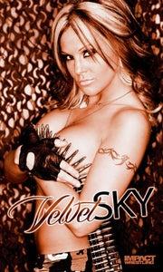 Image of Velvet Sky banner