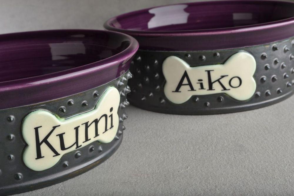 Image of Personalized Spiky Dog Bowl Set