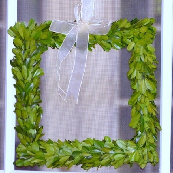 """Image of Preserved Boxwood Wreath -- Square 8"""""""