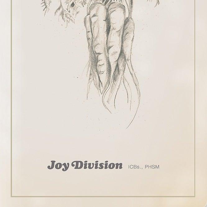 Image of Unknown Pleasures Art Print