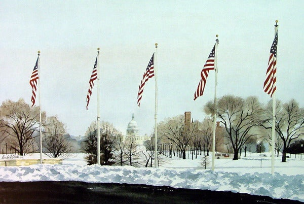 Image of A Capitol View - American Portfolio