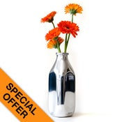 Image of Milk Bottle Vase (Each)
